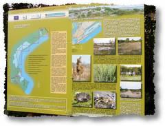 eraclea-natura-turismo