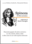 Spinoza Un blog serissimo.